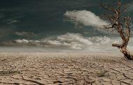 Pakar IPB: Akibat Perubahan Iklim, Suhu Bumi akan Naik 2 Derajat Celcius
