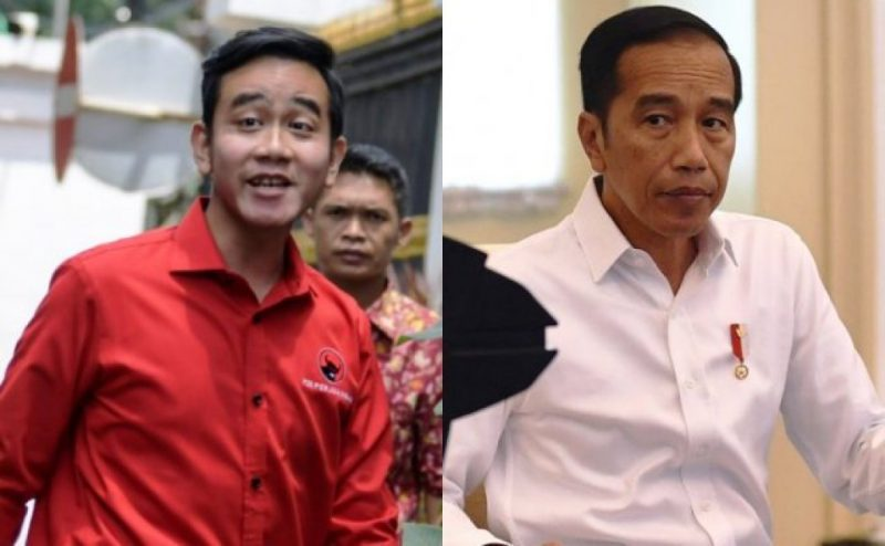 Jamiluddin Ritonga: Gibran Belum Layak Maju Pilgub DKI Jakarta